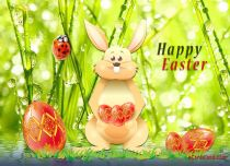 eCards  Easter Rabbit eCard,
