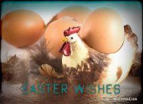 eCards Easter Easter Rooster eCard, Easter Rooster eCard