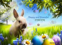 eCards Easter Happy and Peaceful Easter, Happy and Peaceful Easter