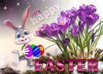 eCards  Happy Bunny,