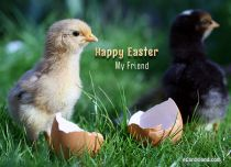 eCards  Happy Easter My Friend,