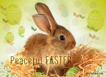 eCards Easter Peaceful Easter eCard, Peaceful Easter eCard