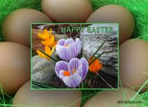eCards Easter Sending Warm Wishes, Sending Warm Wishes