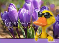 eCards Easter Sending Warm Wishes for You, Sending Warm Wishes for You