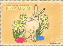 eCards  Wishes from the Easter Bunny,