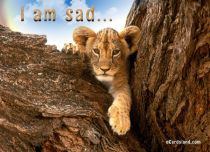 Free eCards, Animals cards messages - I am Sad,