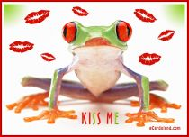 Free eCards, Animals cards messages - Kiss Me,
