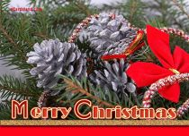 Free eCards - Card Christmas,