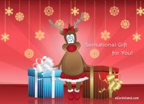 eCards  Sensational Gifts for You,