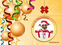 Free eCards - Christmas Dog,