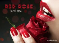 Free eCards Love - Red Rose and You,