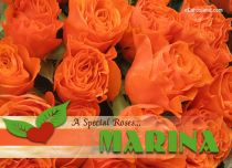 eCards Name Day - Women A Special Rose for Marina, A Special Rose for Marina