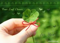 Free eCards St. Patrick's Day - Four Leaf Clover for You,