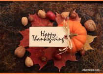 eCards  Happy Thanksgiving e-Card,