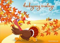 eCards Thanksgiving Day Thanksgiving Greetings, Thanksgiving Greetings