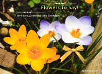 eCards Grandparents Day Flowers To Say, Flowers To Say