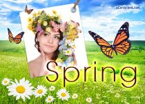 Free eCards Seasons - Spring,