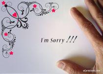 eCards  I'm Sorry,