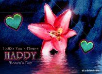 eCards  I Offer You a Flower,