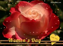 eCards Women's Day Beautiful Rose For A Beautiful Lady, Beautiful Rose For A Beautiful Lady