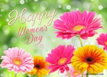 eCards Women's Day Colorful Flowers For You, Colorful Flowers For You