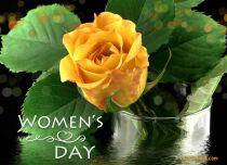 eCards Women's Day Especially For You, Especially For You