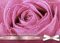 eCards Women's Day The Rose for a Beautiful Woman, The Rose for a Beautiful Woman