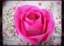eCards Women's Day Women's Day Beautiful Rose, Women's Day Beautiful Rose