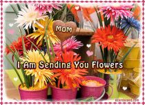 eCards Mother's Day I am Sending You Flowers, I am Sending You Flowers