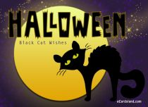 eCards Halloween Black Cat Wishes, Black Cat Wishes
