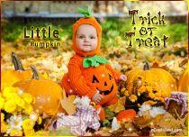 eCards  Little Halloween Pumpkin,