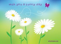 eCards Name Day Wish You a Sunny Day, Wish You a Sunny Day