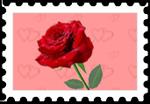 59.Rose